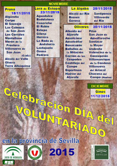 voluntariado2015a